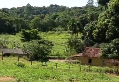 Bandidos rendem família, roubam objetos e matam 5 animais em Cariacica-ES.